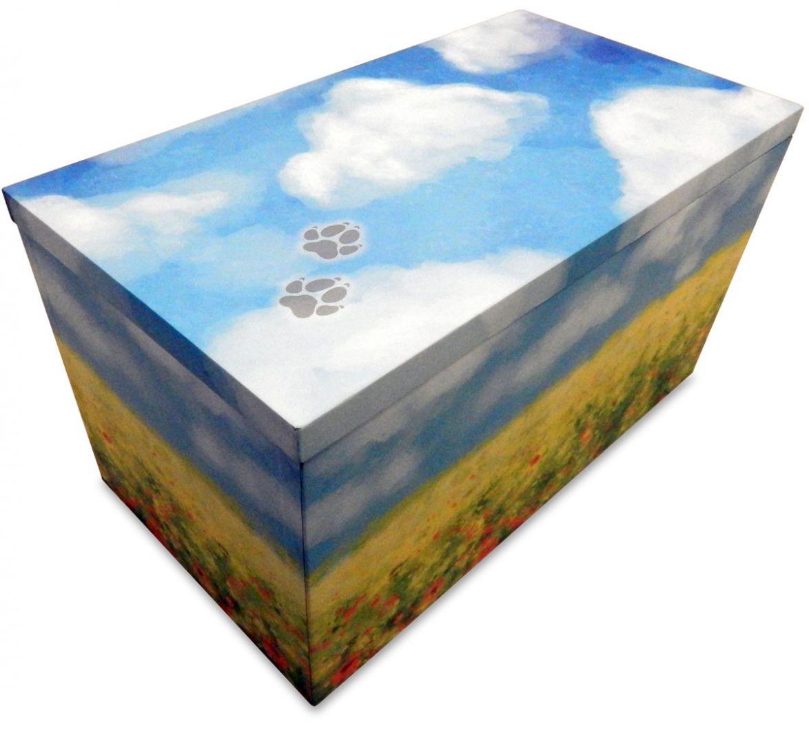 box-piccolo-prato-1561629380198