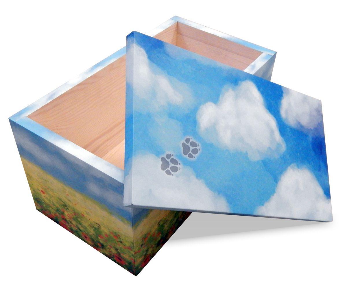 box-piccolo-prato-dettaglio-1561629406526