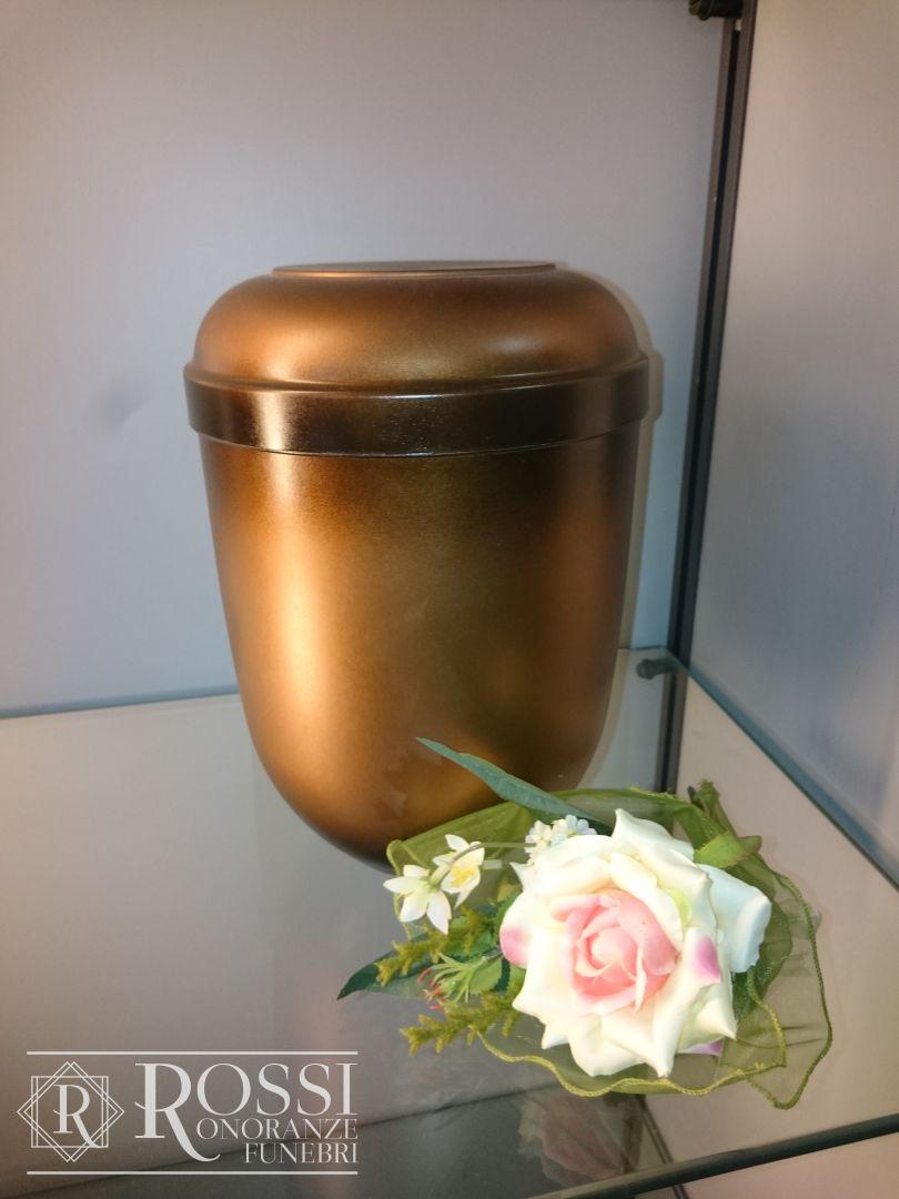 urna-biodegradabile-1507545271648